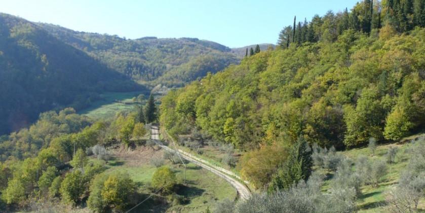 View, Restorative Retreat